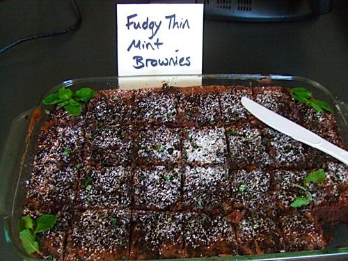 Fudgy Thin Mint Brownies