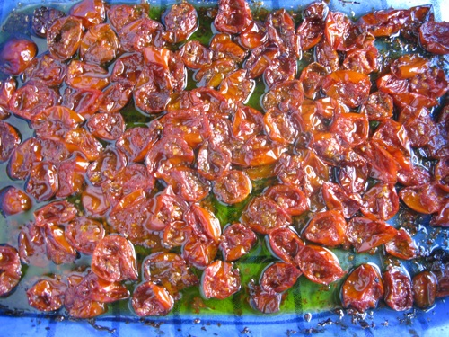 Slow roasting tomatoes round 1