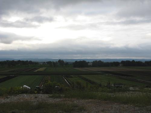 Cloudy farm day