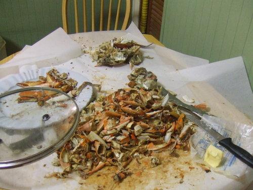 Crab_carnage